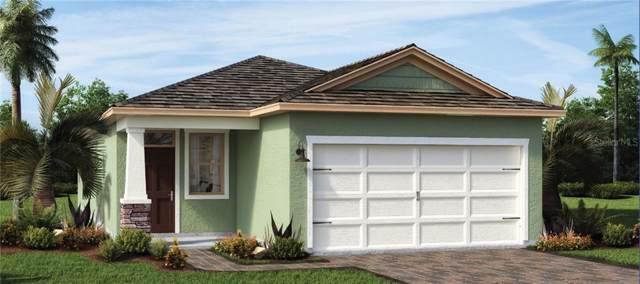 17333 Blazing Star Circle, Clermont, FL 34711 (MLS #O5830187) :: Team Bohannon Keller Williams, Tampa Properties