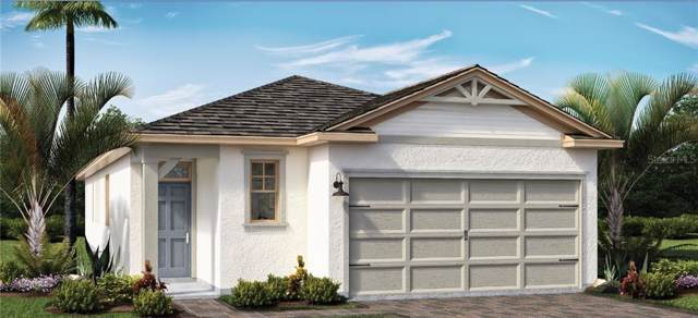 17305 Blazing Star Circle, Clermont, FL 34711 (MLS #O5830192) :: Team Bohannon Keller Williams, Tampa Properties