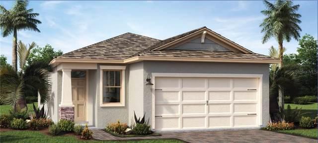 17313 Blazing Star Circle, Clermont, FL 34711 (MLS #O5830193) :: Team Bohannon Keller Williams, Tampa Properties