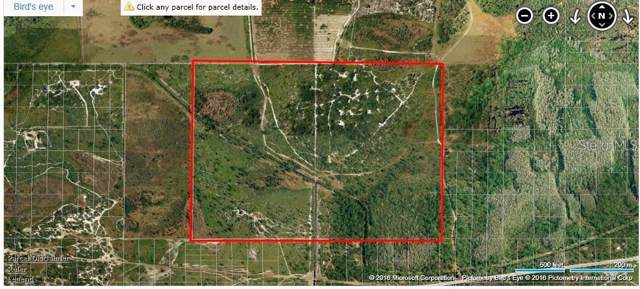 Holopaw Groves Rd, Saint Cloud, FL 34771 (MLS #O5830345) :: 54 Realty