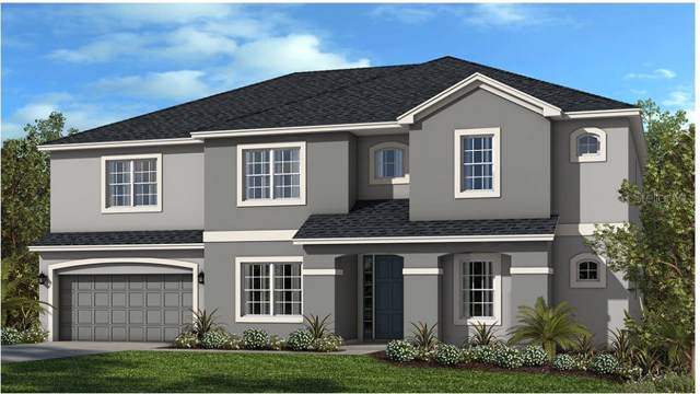 14187 Jomatt Loop, Winter Garden, FL 34787 (MLS #O5830401) :: Your Florida House Team