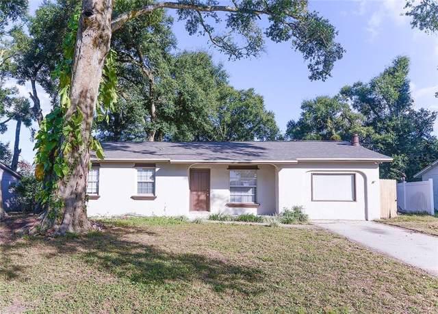5533 Lesser Drive, Orlando, FL 32818 (MLS #O5830504) :: CENTURY 21 OneBlue