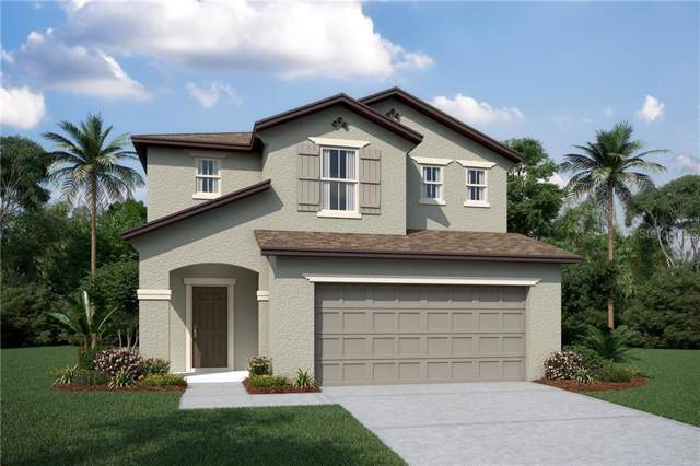 2817 Noble Crow Drive, Kissimmee, FL 34744 (MLS #O5830531) :: Zarghami Group