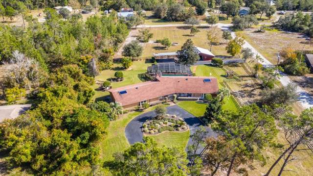 5615 State Road 11, De Leon Springs, FL 32130 (MLS #O5830669) :: Griffin Group