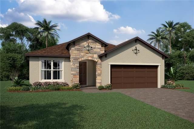 4084 Pindo Palm Lane, Orlando, FL 32824 (MLS #O5830806) :: The Duncan Duo Team