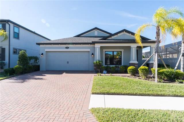 1145 Lorapetalum Lane, Lutz, FL 33558 (MLS #O5830817) :: The Duncan Duo Team