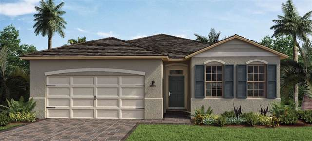 3696 Beautyberry Way, Clermont, FL 34711 (MLS #O5830822) :: Team Bohannon Keller Williams, Tampa Properties