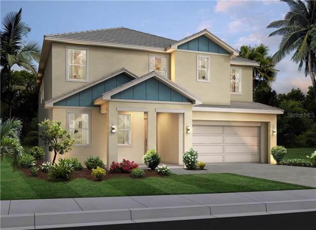 2607 Calistoga Avenue, Kissimmee, FL 34741 (MLS #O5831323) :: 54 Realty