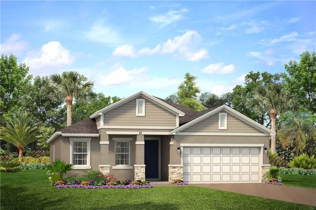 2302 Stone Table Street, Odessa, FL 33556 (MLS #O5831517) :: The Duncan Duo Team