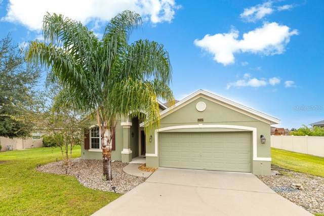 12509 Hammock Pointe Circle, Clermont, FL 34711 (MLS #O5831637) :: Griffin Group