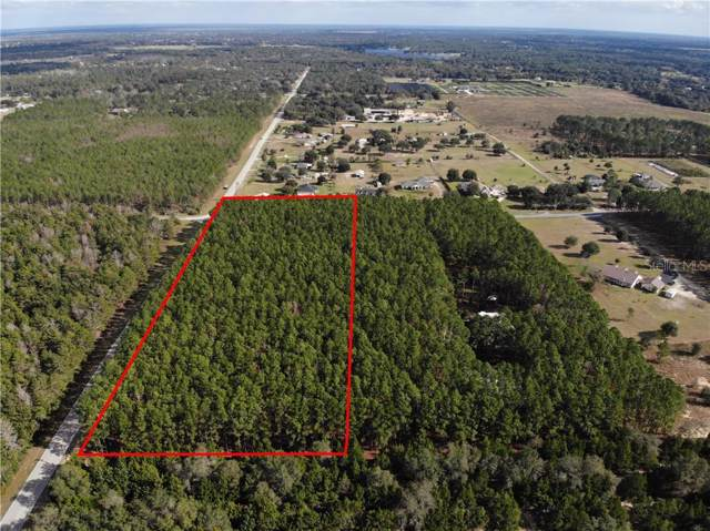 35935 Thrill Hill Rd, Eustis, FL 32736 (MLS #O5831756) :: Your Florida House Team