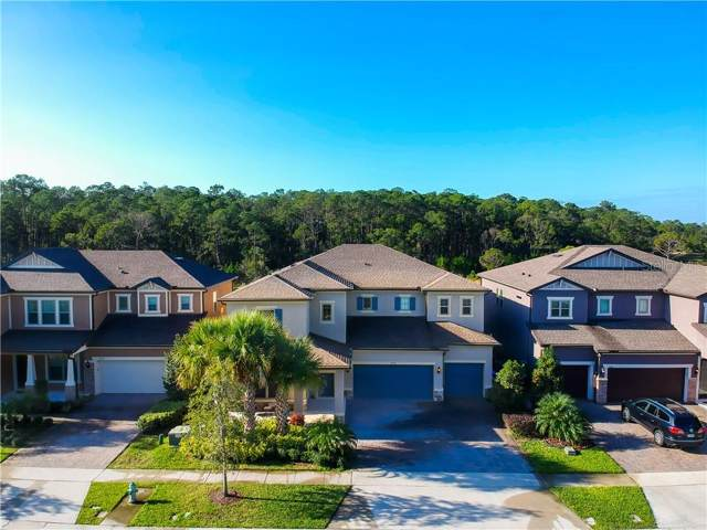 Address Not Published, Orlando, FL 32836 (MLS #O5833029) :: Rabell Realty Group