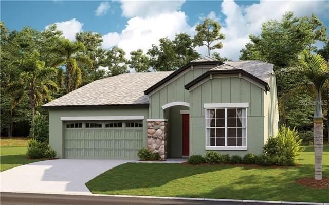 2970 Scarlett Drive, Saint Cloud, FL 34772 (MLS #O5833044) :: The Robertson Real Estate Group