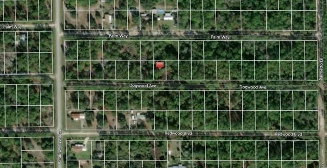 314 Dogwood Avenue, Georgetown, FL 32139 (MLS #O5833083) :: Griffin Group