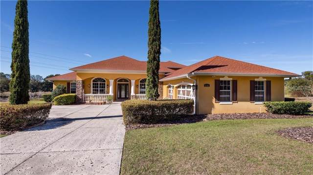 21341 Marsh View Court, Clermont, FL 34715 (MLS #O5833867) :: The A Team of Charles Rutenberg Realty