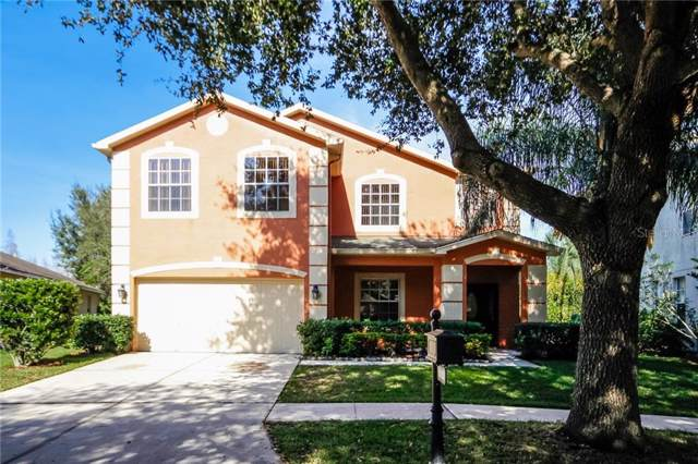 19150 Dove Creek Drive, Tampa, FL 33647 (MLS #O5834425) :: Team Bohannon Keller Williams, Tampa Properties