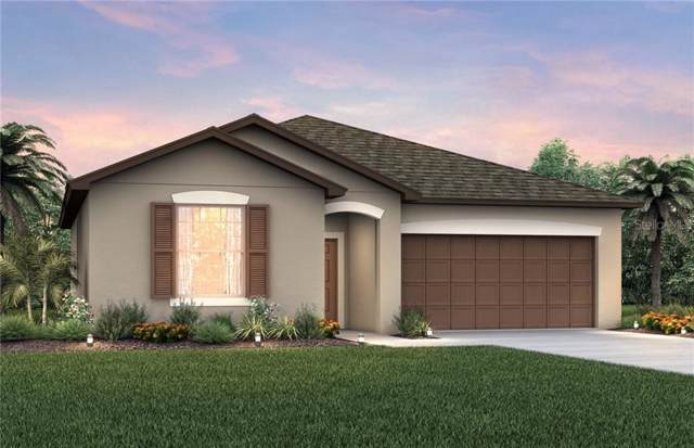 8723 Conoy Avenue, Polk City, FL 33868 (MLS #O5834716) :: Baird Realty Group