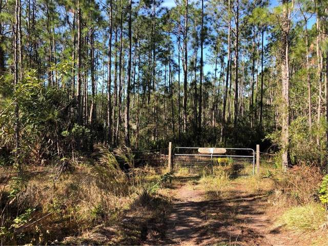 1000 Wild Pine Road, Mims, FL 32754 (MLS #O5835424) :: Premier Home Experts