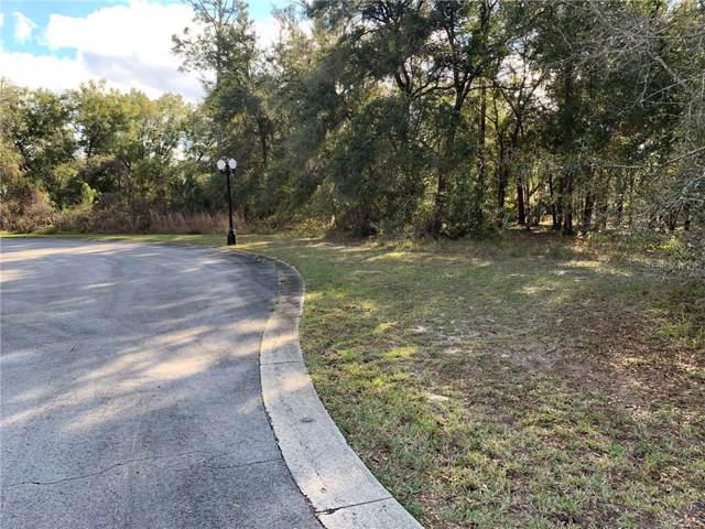1900 S Farm Road, Deland, FL 32720 (MLS #O5835654) :: Zarghami Group