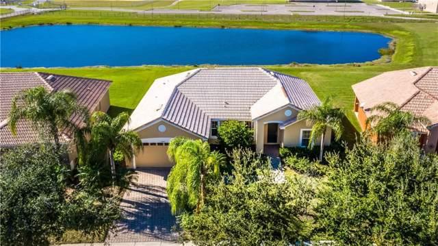 3704 Greencrest Court, Kissimmee, FL 34746 (MLS #O5835708) :: Bustamante Real Estate