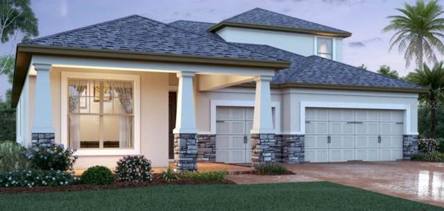 11190 Lemon Lake Boulevard, Orlando, FL 32836 (MLS #O5835803) :: Mark and Joni Coulter | Better Homes and Gardens