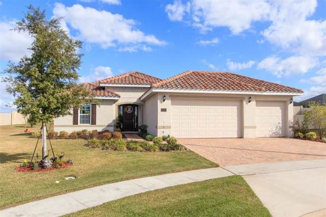 338 Terracotta Ter, Howey in the Hills, FL 34737 (MLS #O5835912) :: Cartwright Realty