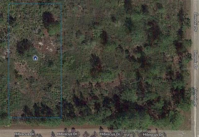 206 Hibiscus Drive, Lake Wales, FL 33898 (MLS #O5836362) :: The Duncan Duo Team