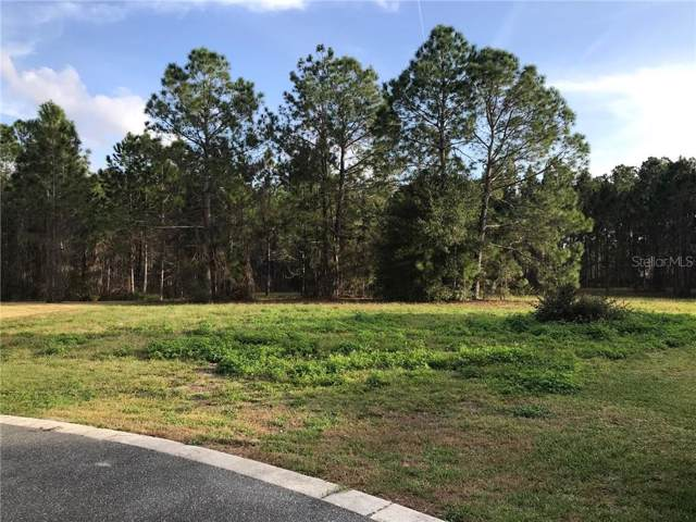 504 Yellow Submarine Court, Groveland, FL 34737 (MLS #O5836433) :: 54 Realty