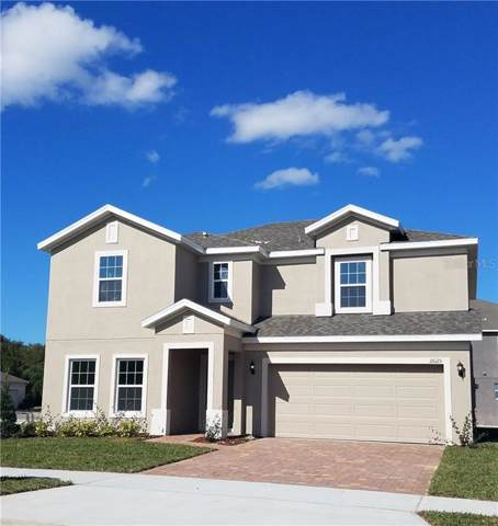 26125 Meadow Breeze Lane S, Leesburg, FL 34748 (MLS #O5836561) :: Team Bohannon Keller Williams, Tampa Properties