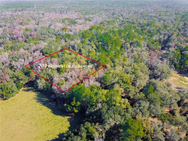 201 Easement Lane, Florahome, FL 32140 (MLS #O5836665) :: The Heidi Schrock Team