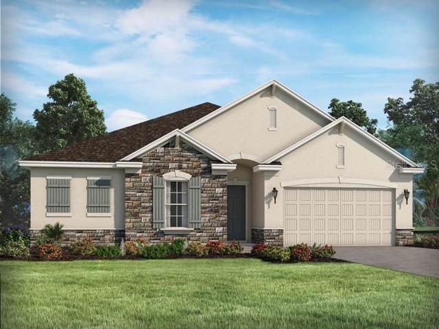 17704 Estuary Grove Place, Lutz, FL 33549 (MLS #O5836738) :: GO Realty