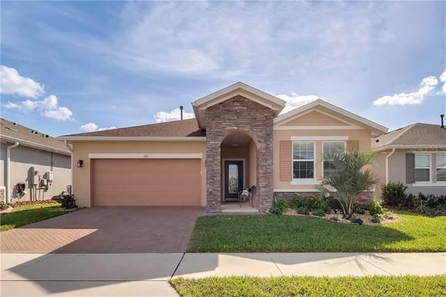 804 Hidden Moss Drive, Groveland, FL 34736 (MLS #O5837707) :: Burwell Real Estate