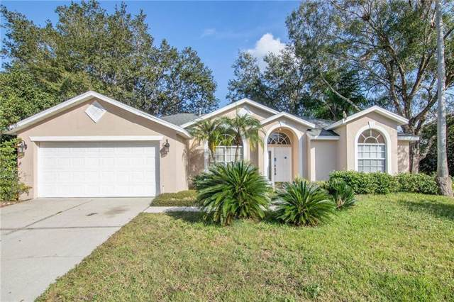 16003 Selby Way, Tampa, FL 33647 (MLS #O5837918) :: Cartwright Realty