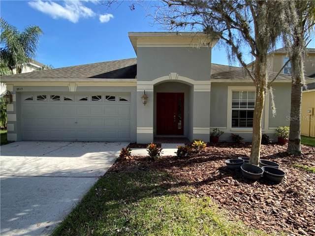 18115 Bahama Bay Drive, Tampa, FL 33647 (MLS #O5838029) :: Cartwright Realty