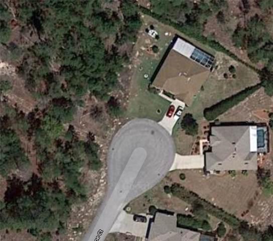 3 Kalanchoe Court, Homosassa, FL 34446 (MLS #O5838122) :: Pristine Properties