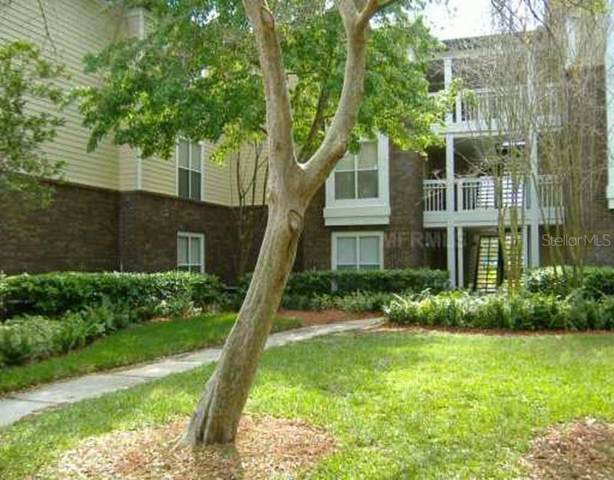 Address Not Published, Tampa, FL 33624 (MLS #O5838131) :: The Duncan Duo Team
