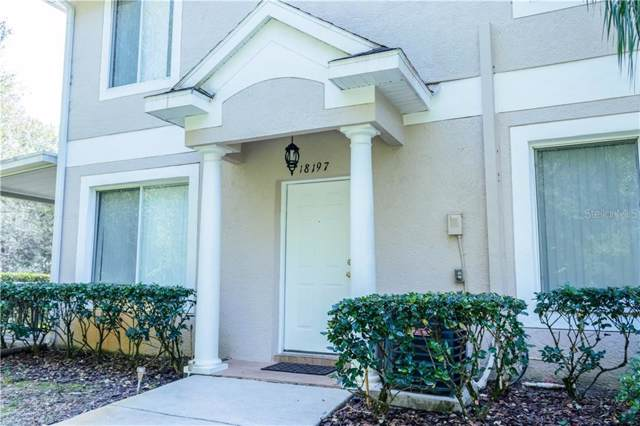 18197 Paradise Point Drive, Tampa, FL 33647 (MLS #O5838217) :: Premier Home Experts