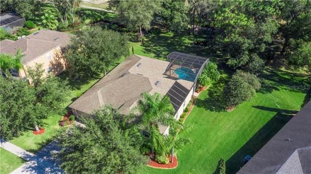 747 Rock Creek St, Apopka, FL 32712 (MLS #O5838321) :: Rabell Realty Group