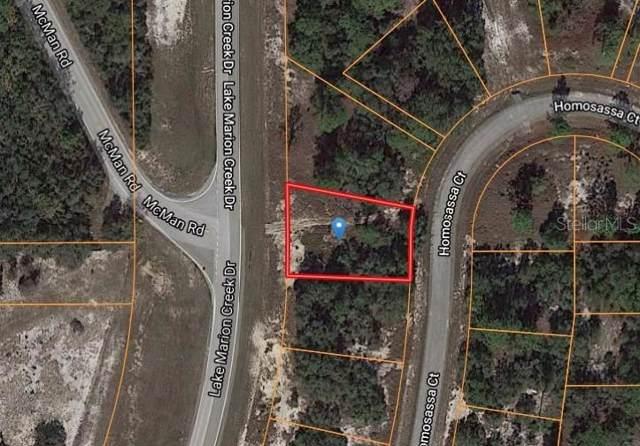 1335 Homosassa Court, Poinciana, FL 34759 (MLS #O5838955) :: Team Bohannon Keller Williams, Tampa Properties