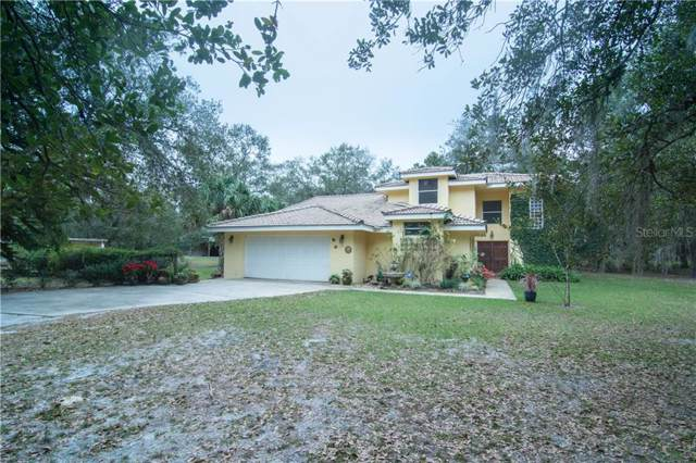 801 Lake Harney Road, Geneva, FL 32732 (MLS #O5838966) :: Griffin Group