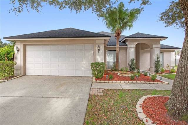 28842 Midnight Star Loop, Wesley Chapel, FL 33543 (MLS #O5839045) :: Team Borham at Keller Williams Realty