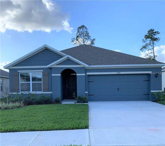 2380 White Poppy Drive, Kissimmee, FL 34747 (MLS #O5839057) :: Cartwright Realty