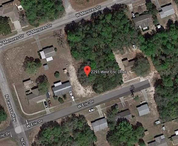 2291 W Eric Drive, Citrus Springs, FL 34434 (MLS #O5839141) :: Cartwright Realty