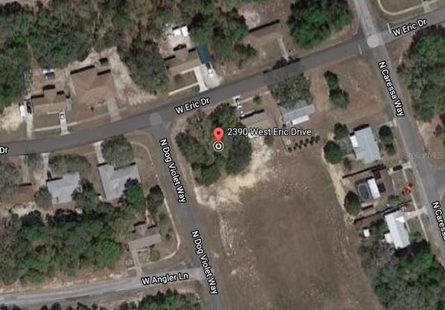 2390 W Eric Drive, Citrus Springs, FL 34434 (MLS #O5839142) :: Cartwright Realty