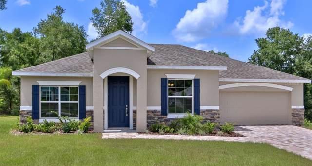 12826 Sugar Court, Grand Island, FL 32735 (MLS #O5839257) :: Cartwright Realty
