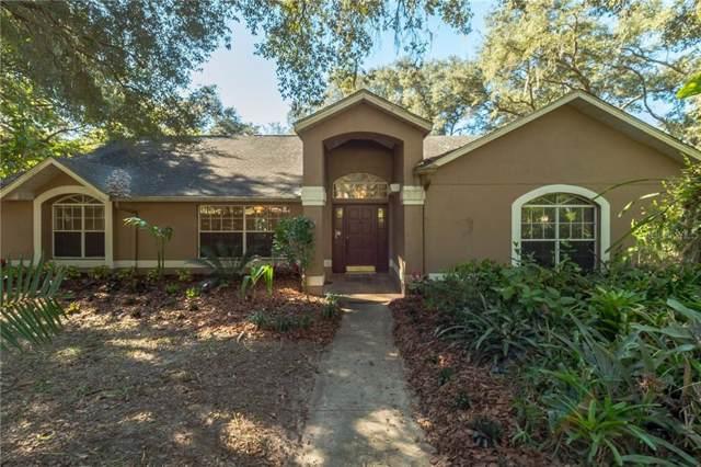 30935 Vista View, Mount Dora, FL 32757 (MLS #O5840117) :: Kendrick Realty Inc