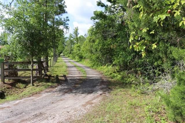 1075 Seneca Oak Trail, Geneva, FL 32732 (MLS #O5840909) :: The Duncan Duo Team
