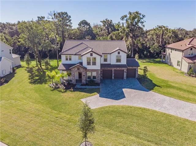 718 Primrose Willow Way, Apopka, FL 32712 (MLS #O5840954) :: Griffin Group