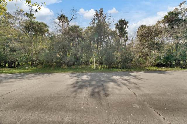 5555 Canvasback Drive, Mims, FL 32754 (MLS #O5842408) :: Rabell Realty Group