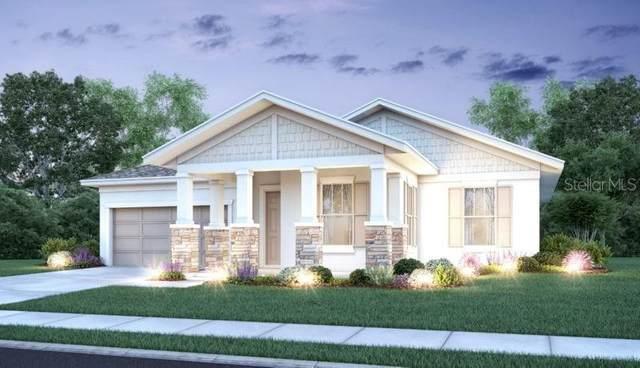 37100 Scenic Ridge Drive, Grand Island, FL 32735 (MLS #O5843565) :: Alpha Equity Team